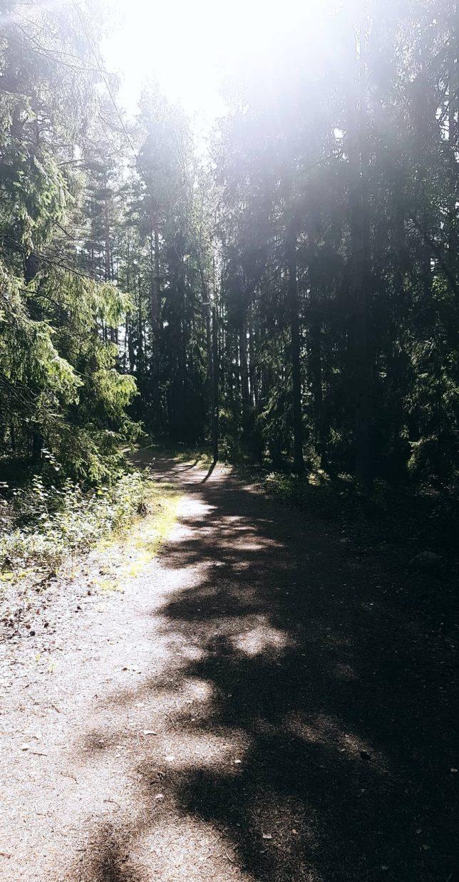 Skogsterapi
